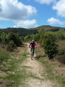 Heather at the end of the Fingers track in Clwyd Forest.
