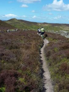Laurence, Paul and Lee on the Clwydian Range, crossing the flank of Moel Famau.