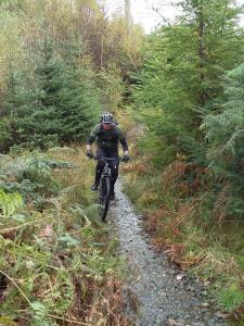 Martin on the Iron Keld Plantation climb.