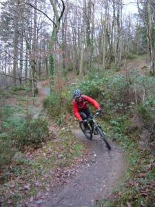 Steve on the Mocha singletrack of the Gwydir Mawr trail.