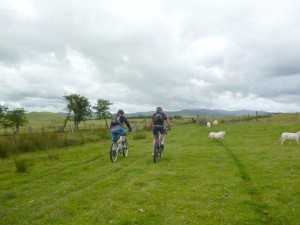 Pete and Mark crossing the green fields of Pen y Gwely.