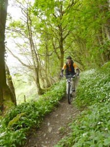 Shane on the Rectory singletrack in the Ceiriog Valley.