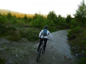 Sally on the cycle trail in Nercwys Forest.