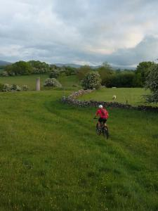 Stuart starting the Chimney Trail near Graianrhyd.