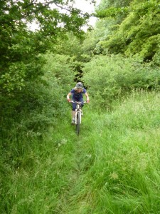 Sally on the green singletrack to Pany y fordd farm.