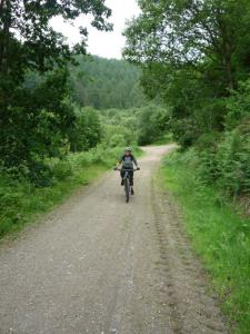 Becky riding through Clwyd Forest below Moel Famau.