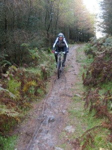 Steph on the Tarn Intake trail in Grizedale Forest.
