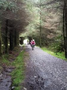On the tunnel of trees climb on the Alwen Reservoir cycle trail.