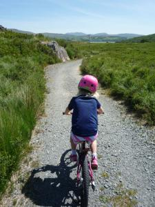 Anna on the trail to Coed y Rhygen.