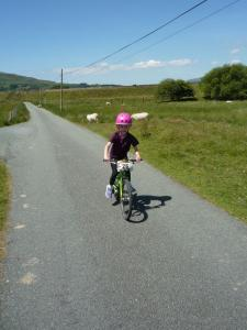 Elisabeth following the Trawsfynydd levee lane to the A470.