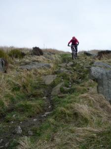 Wayne on the Whirlaw Common descent.