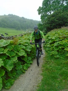 Brian on the long singletrack descent from Feizor on the Pennine Bridleway.