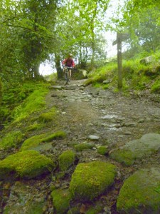 Mike descending through Callis wood.